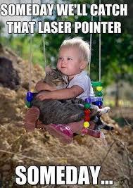 Funny Kid Memes on Pinterest   Clean Funny Memes, Kid Memes and ... via Relatably.com