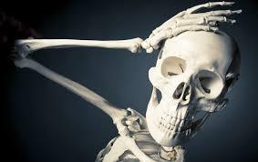 Resultado de imagem para esqueleto