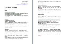 cv to media cv mc professional practise portfolio to