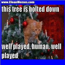 Christmas Memes | Clean Memes – The Best The Most Online via Relatably.com