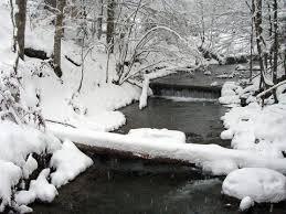 Картинки по запросу лумшоры чаны зимой
