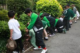 growing interests forest park preparatory school we are very proud of our extra curricular programme which provides a varied range of activities for our children to engage in