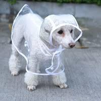 <b>Raincoat</b> - Shop Cheap <b>Raincoat</b> from China <b>Raincoat</b> Suppliers at ...