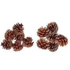 12ct Plain/<b>Gold Tipped Natural</b> Pinecones Christmas Ornament Set ...