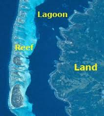 Image result for barrier reef diagram