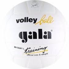 <b>Мяч волейбольный Gala Training</b> (Цвет: Белый; ) - Фарпост в ...