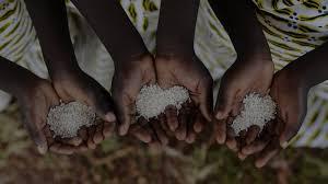 <b>Rise Against</b> Hunger - Africa: Home | RAH