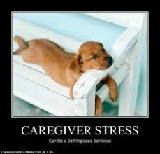 funny stress memes | Recaption See All Captions | Things I would ... via Relatably.com