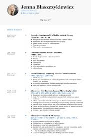 executive assistant to vp of public safety privacy resume samples sample resume executive