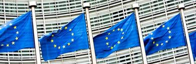 <b>New</b> EU Regulation Sets <b>BPA</b> Limit <b>in</b> Food-Contact Varnishes and ...