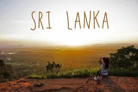 Картинки по запросу Шри Ланка