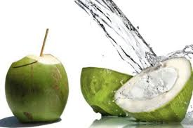 Resultado de imagem para coco