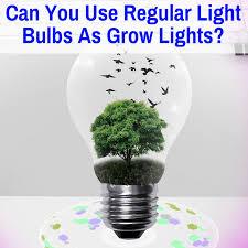 Can You Use Regular <b>Light</b> Bulbs As <b>Grow Lights</b>?