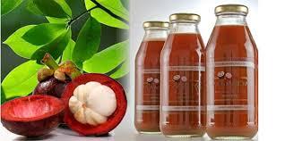 Obat Herbal Kadar Gula Darah Rendah