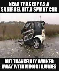 Smart car accidentally hits a squirrel, but don't worry, the ... via Relatably.com