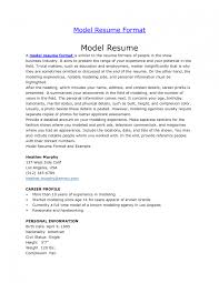 resume examples objective teacher resume sample objective resume examples objective teacher resume sample objective professional resume samples in word format resume models pdf file resume models for freshers of