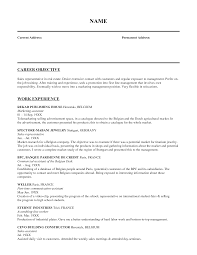Resume Examples  Work Experience Sales Objective For Resume With Sales Assistant Experience  Sales Objective