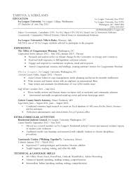 chronological resume template resume sample reverse chronological resume sample