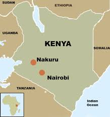 Image result for nakuru kenya map