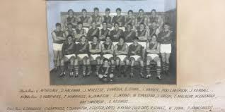 s williamstown football club photos