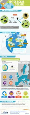 17 best images about infographics wealth what are vector borne diseases what does efsa do in this field efsa s