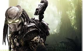 Image result for predator