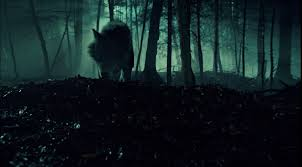 <b>Werewolf</b> | Hemlock Grove Wiki | FANDOM powered by Wikia