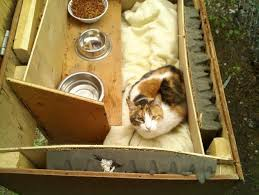 ideas about Outdoor Cat Houses on Pinterest   Outdoor Cats       ideas about Outdoor Cat Houses on Pinterest   Outdoor Cats  Cat Houses and Feral Cats