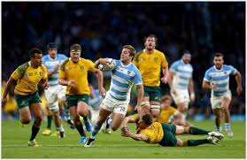 Resultado de imagen de semifinales mundial de rugby 2015
