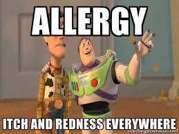 ALLERGY ITCH AND REDNESS EVERYWHERE - X, X Everywhere | Meme Generator via Relatably.com