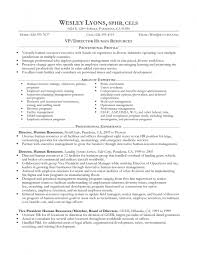 examples of resumes experience professional resume sample no job experience professional resume sample no experience job resume regard to 81 amusing job resume example