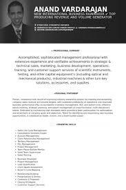ceo resume samples   visualcv resume samples databasefounder and ceo resume samples