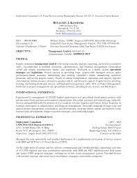 resume for bank job sample  example business analyst resume resume       financial asasian com