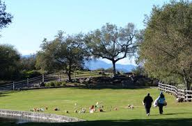 Image result for kennedy park napa june news