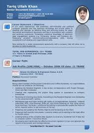 tariq document controller cv