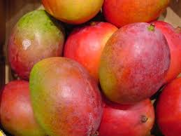 Image result for picture of mango