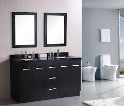 design ideas dual bathroom vanities