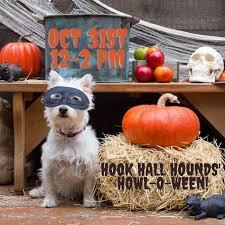 Howl-o-<b>Ween</b> with Hook <b>Hall</b> Hounds — Hook <b>Hall</b>