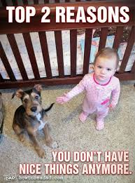 Dog vs Kids unnatural disasters - which is more destructive | Dog ... via Relatably.com