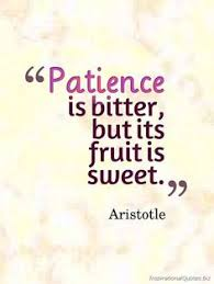 Patience Quotes on Pinterest | Quotes About Sacrifice, Freedom ... via Relatably.com