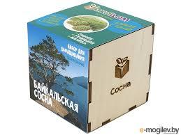 Купить умное растение Умные <b>растения ЭкоДом Сосна</b> ...