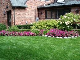 lawn care ideas lawn care ideas happy now tk