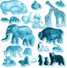 Image result for zoology