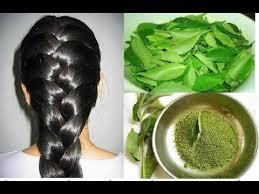 Resultado de imagen para Este remedio para el cabello dañado y acelera su crecimiento en un 90% mas rápido y evita su caída.