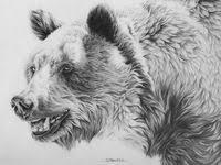 <b>Медведи</b>: лучшие изображения (57) | Татуировки <b>медведя</b> ...
