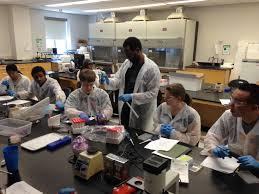 call for applications molecular biology lab skills bootcamp 0130