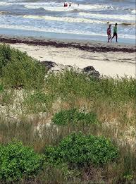 Image result for galveston beach 1965
