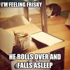 I'm feeling frisky he rolls over and falls asleep - Cats wife ... via Relatably.com