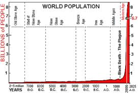 college essays  college application essays   world population essayfree essays on world population day essay through