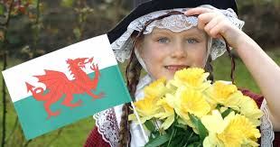 Image result for St Davids Day